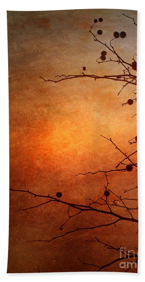 Orange Hand Towel featuring the photograph Orange Simplicity by Tara Turner