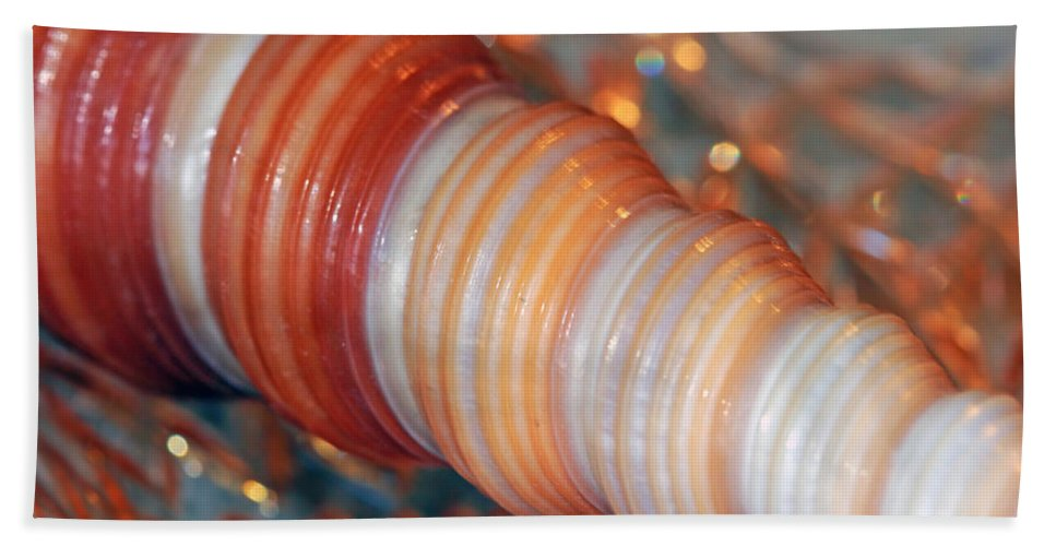 Seashell Hand Towel featuring the photograph Orange Spiral Shell by Angela Murdock