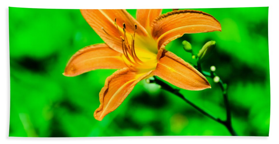 Flower Hand Towel featuring the photograph Orange Tiger Lily by Jennifer Wick