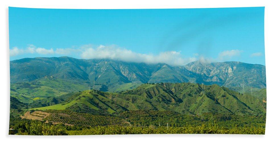 Photography Bath Sheet featuring the photograph Orange Tree Grove, Santa Paula, Ventura by Panoramic Images