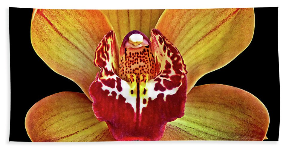 Artistic Photography Bath Sheet featuring the photograph Orchid Splendor by Maria Ollman