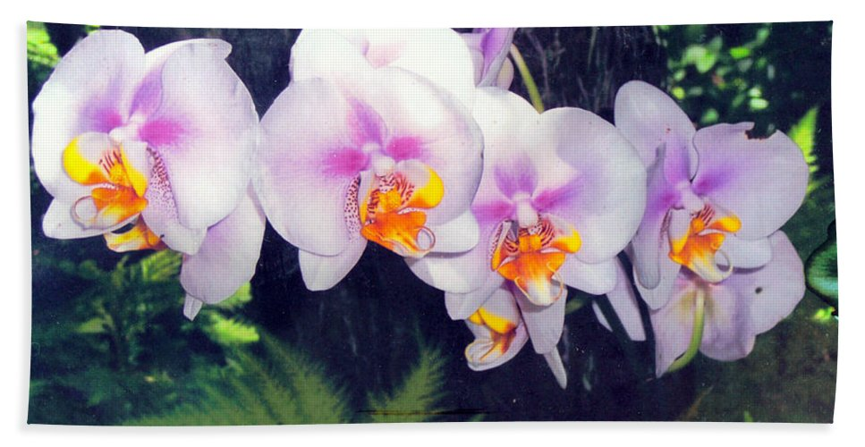 Orchids Hand Towel featuring the photograph Orchids Of Hawaii by Dina Holland