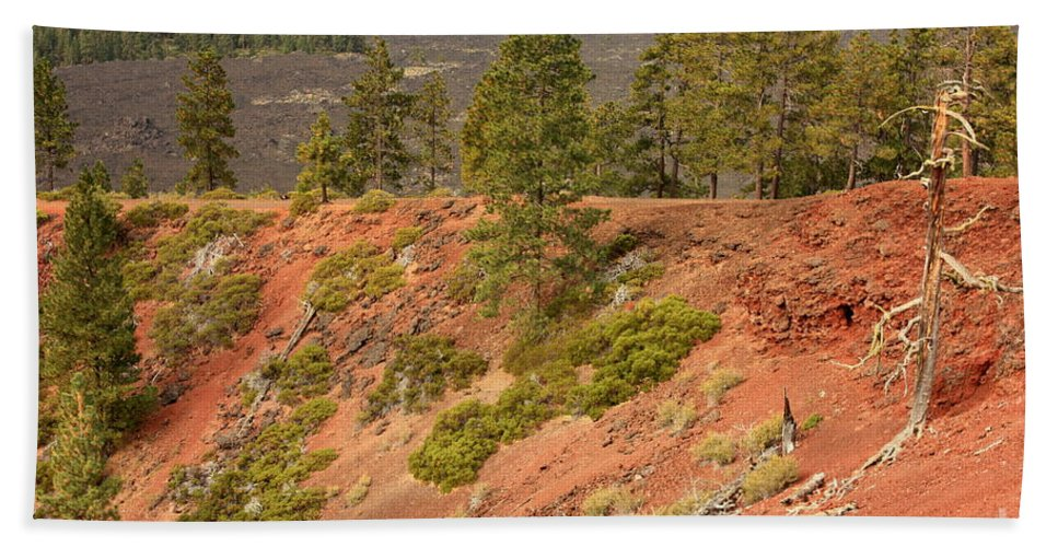 Oregon Landscape Bath Sheet featuring the photograph Oregon Landscape - Red Crater by Carol Groenen