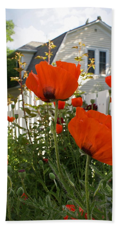 Poppies Hand Towel featuring the photograph Oriental Poppies by Heather Coen
