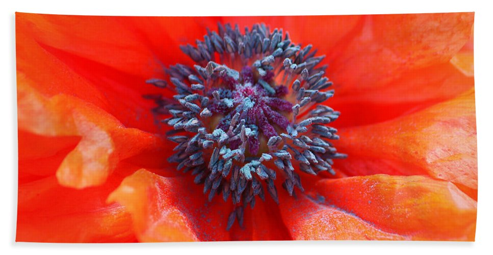 Floral Bath Sheet featuring the photograph Oriental Poppy by James Eddy