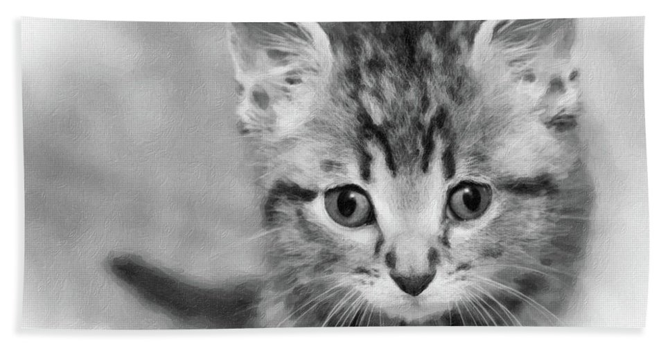 Animals Hand Towel featuring the photograph Orphan by Sue Collura