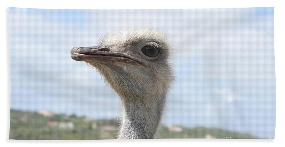Ostrich Hand Towel featuring the photograph Ostrich Head II by Thomas Marchessault