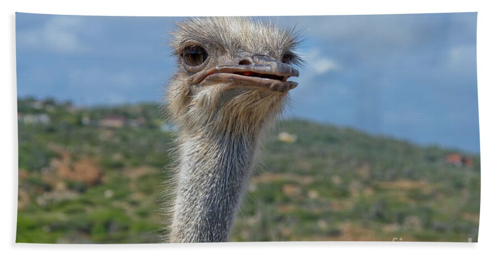 Ostrich Hand Towel featuring the photograph Ostrich Head by Thomas Marchessault