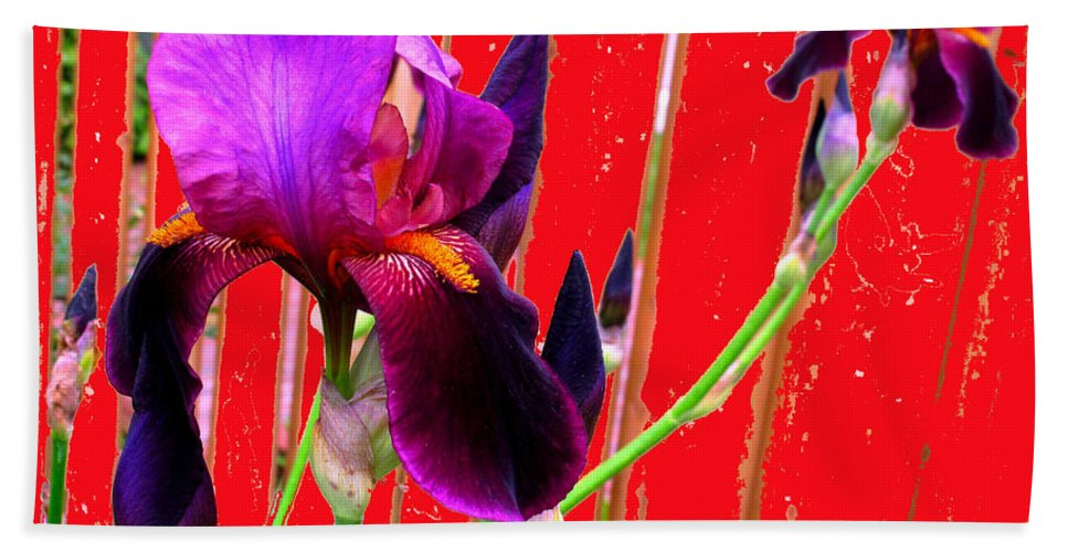 Iris Hand Towel featuring the photograph Other Side Of The Fence by Ian MacDonald