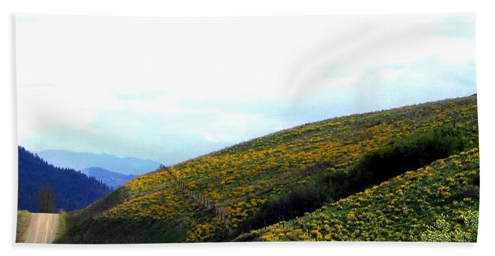 Hills Bath Towel featuring the photograph Over Hill And Dale by Will Borden