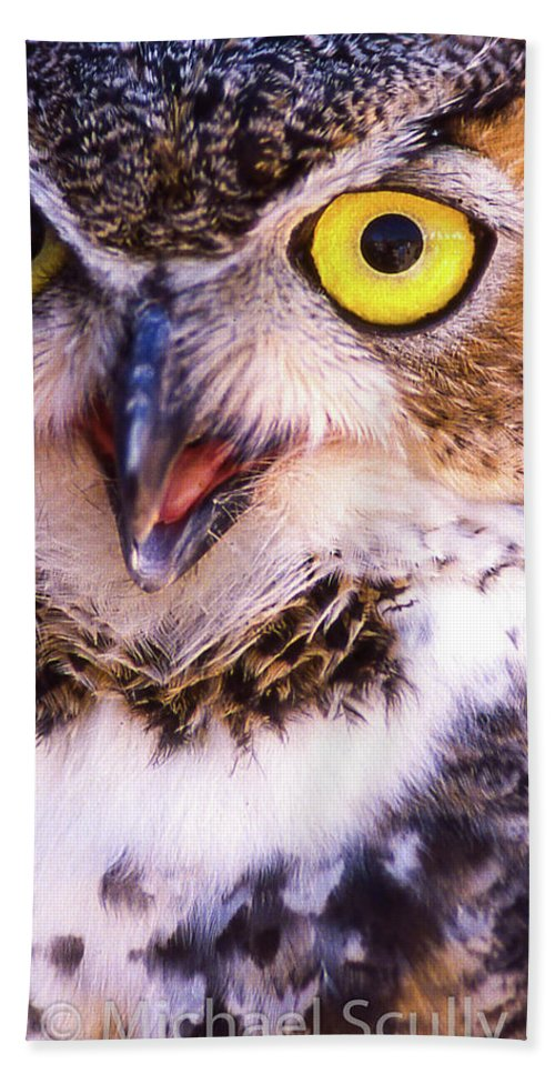 Arizona Bath Sheet featuring the photograph Owl by Michael Scully