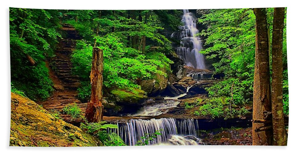 Pennsylvania Bath Sheet featuring the photograph Ozone Falls by Nick Zelinsky