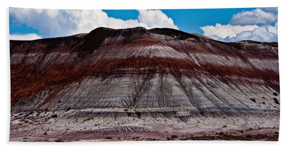 Painted Hand Towel featuring the photograph Painted Desert #5 by Robert J Caputo