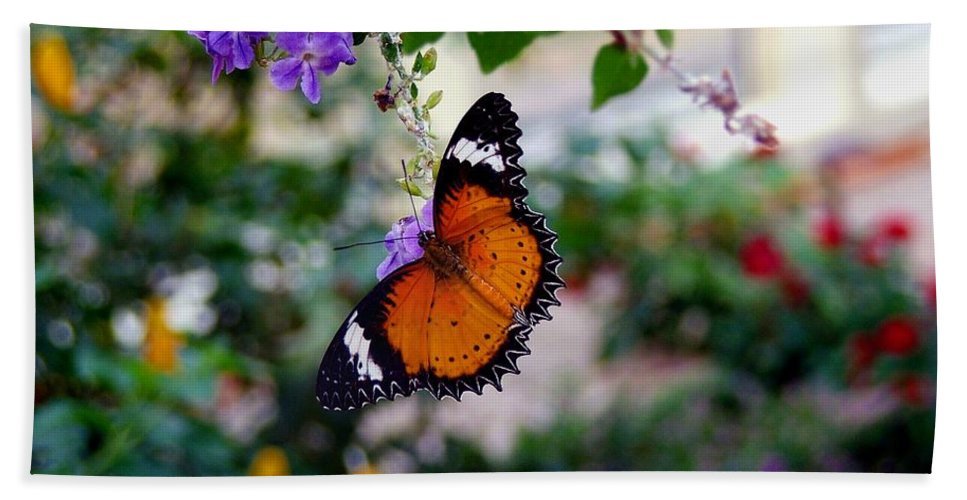 Butterfly Bath Sheet featuring the photograph Painted Lady by Robert Meanor