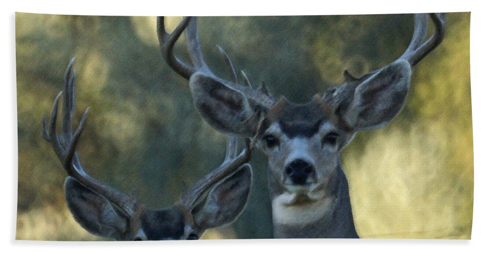 Deer Hand Towel featuring the photograph Pair Of Bucks by Ernie Echols