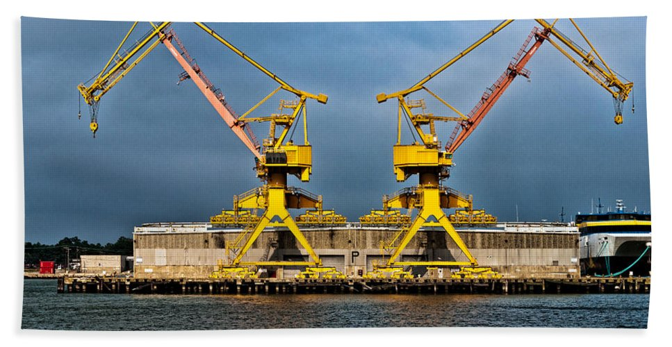 Cranes Hand Towel featuring the photograph Pair Of Cranes by Christopher Holmes
