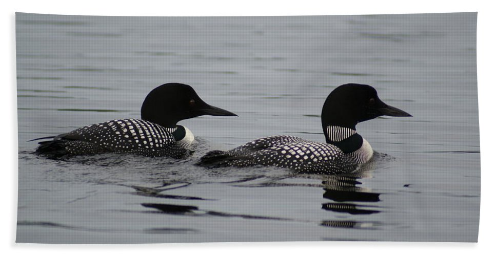 Loon Hand Towel featuring the photograph Pair Of Loons by Steven Clipperton