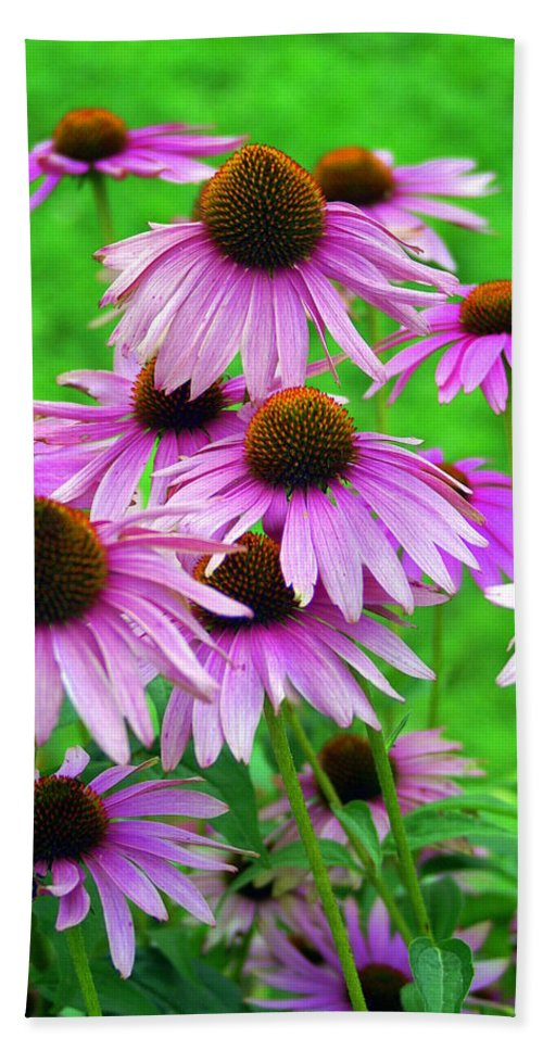 Flowers Bath Towel featuring the photograph Pale Purple Coneflowers by Marty Koch