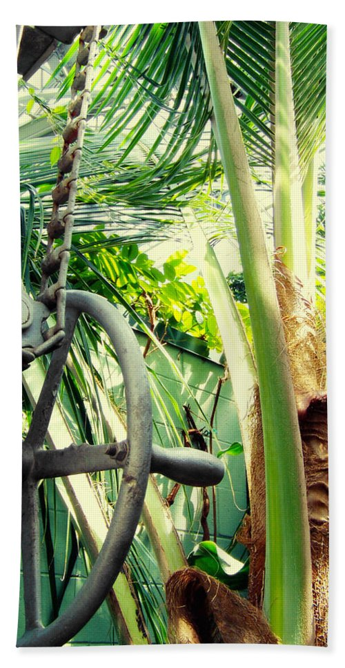 Garfield Park Conservatory Hand Towel featuring the photograph Palm House Pulley by Kyle Hanson