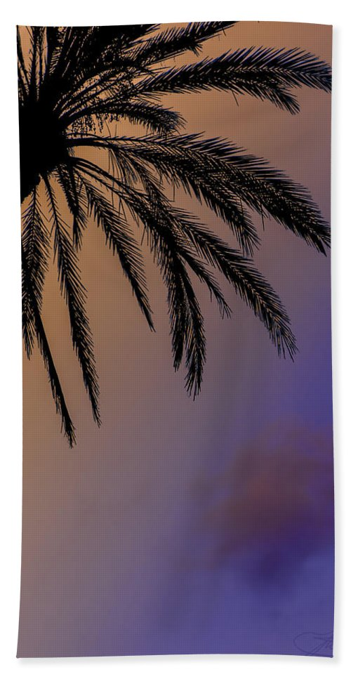 Palm Tree Hand Towel featuring the photograph Palm by Joseph Yvon Cote