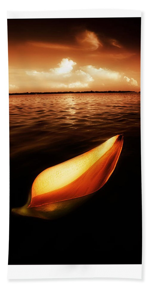 Palm Hand Towel featuring the photograph Palm Leaf Sheath Boat by Mal Bray