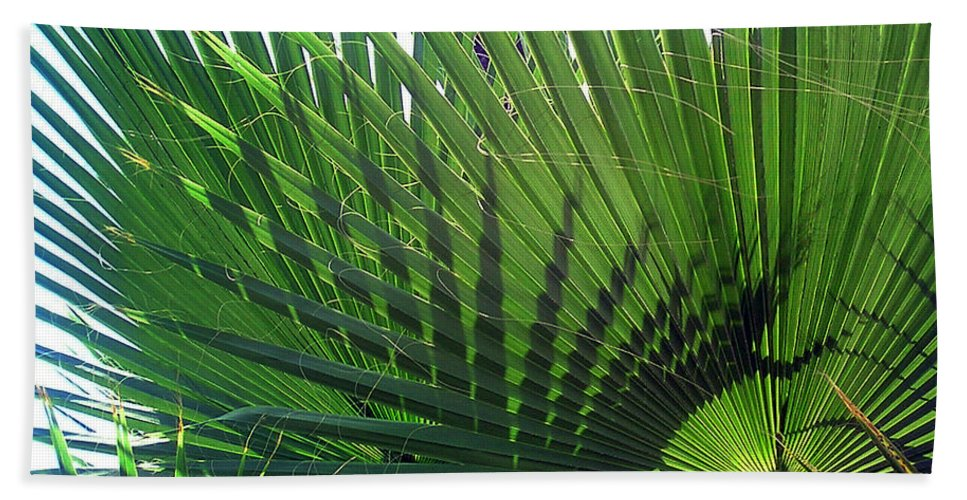 Palm Tree Hand Towel featuring the photograph Palm Tree, Big Leafs by Sofia Metal Queen