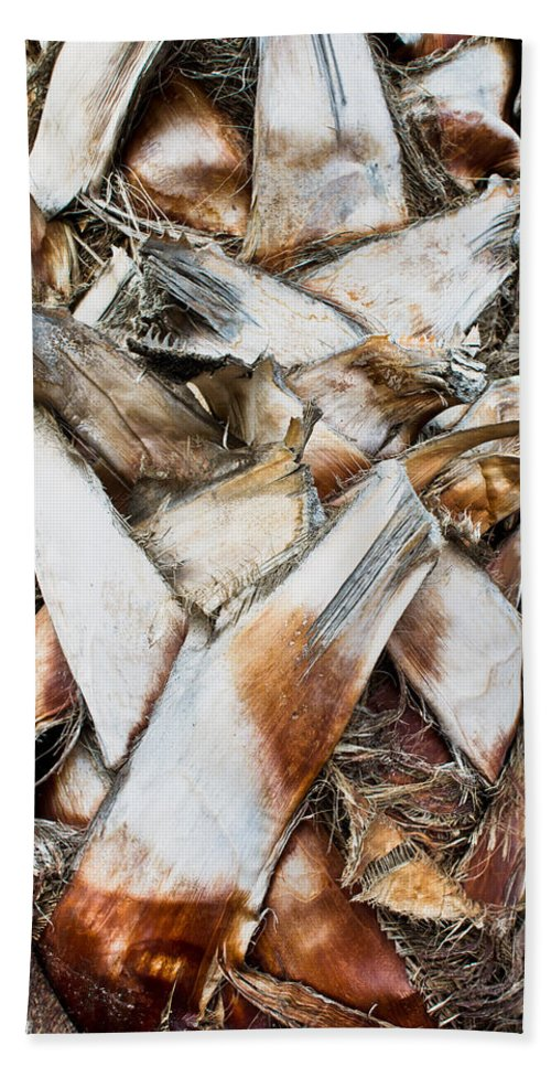 Abstract Bath Sheet featuring the photograph Palm Trunk by Tom Gowanlock