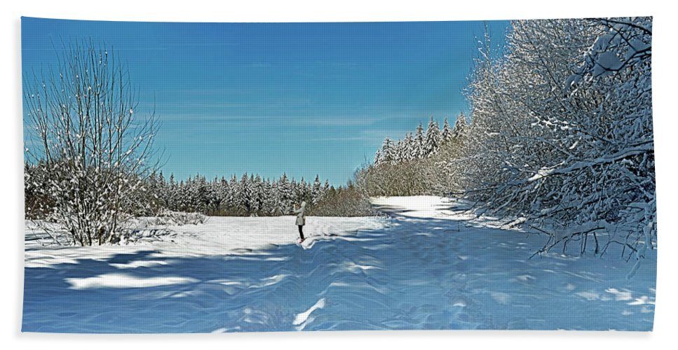 Vancouver Bath Sheet featuring the photograph Panorama Of Winter Park by Diwar Lee
