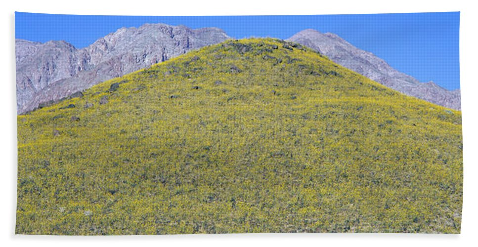 Photography Bath Sheet featuring the photograph Panoramic View Of Desert Gold Yellow by Panoramic Images