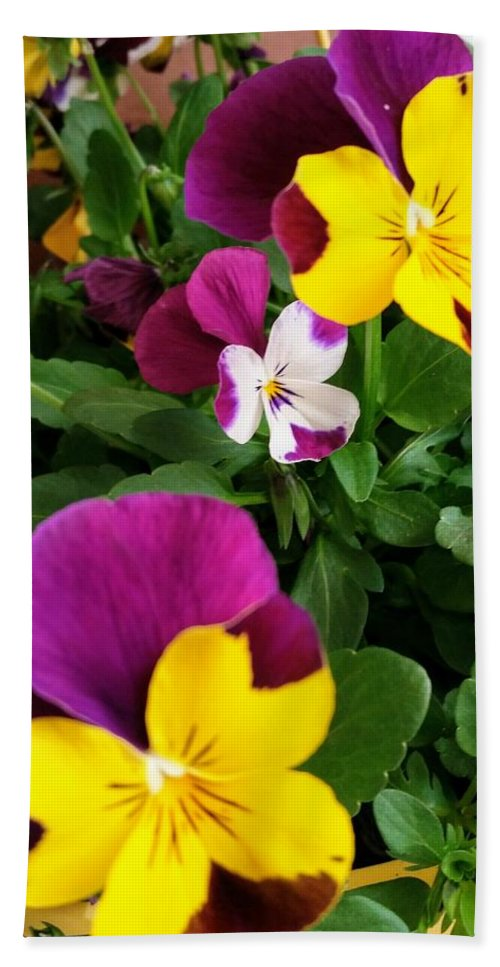 Pansies Bath Sheet featuring the photograph Pansies 3 by Valerie Josi