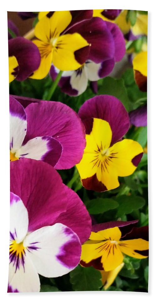 Flowers Bath Sheet featuring the photograph Pansies by Valerie Josi