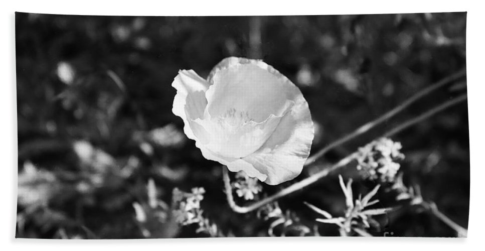 Flowers Hand Towel featuring the photograph Paper Flower In B And W by Kathy McClure