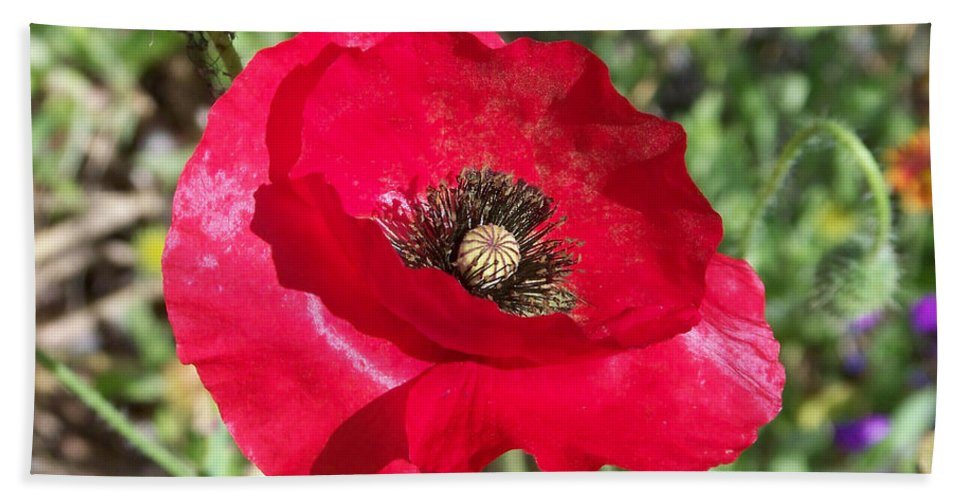 Red Bath Sheet featuring the photograph Paper Flower by Kathy McClure