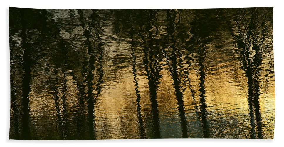 In Park Hand Towel featuring the photograph In The Park . by Alexander Vinogradov