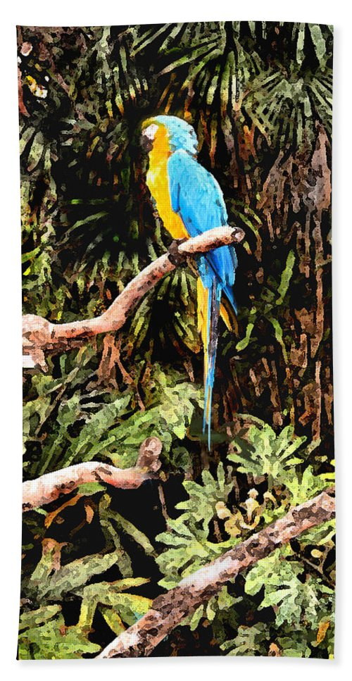 Parrot Hand Towel featuring the photograph Parrot by Steve Karol