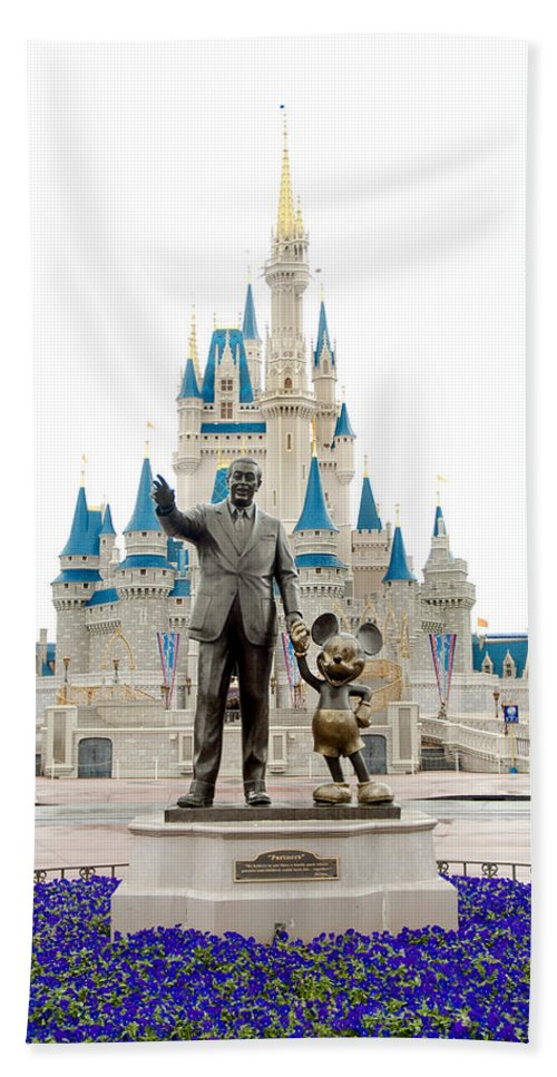Disney Hand Towel featuring the photograph Partners by Greg Fortier