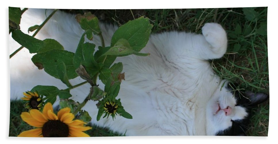 Daisies Bath Sheet featuring the photograph Passed Out Under The Daisies by Marna Edwards Flavell