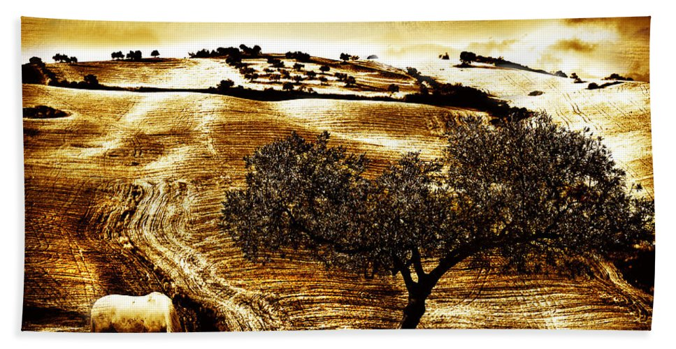 Landscape Bath Sheet featuring the photograph Pastelero Textures by Mal Bray