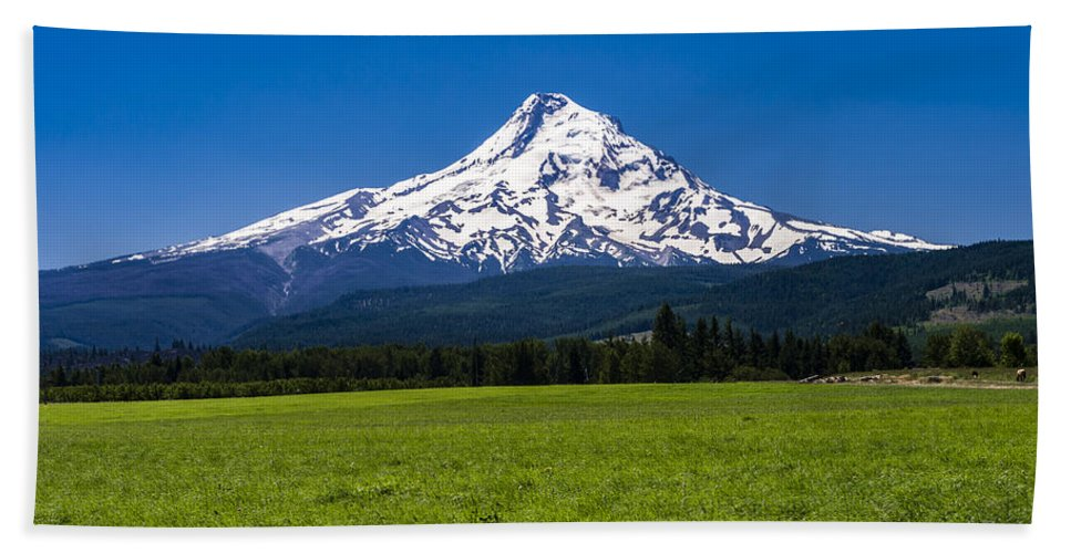 Agriculture Hand Towel featuring the photograph Pasture View Of Mt. Hood by John Trax