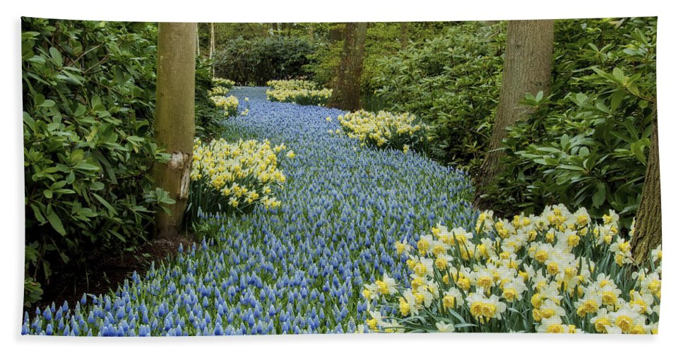 Nature Bath Sheet featuring the photograph Path Of The Beautiful Spring Flowers by Linda D Lester