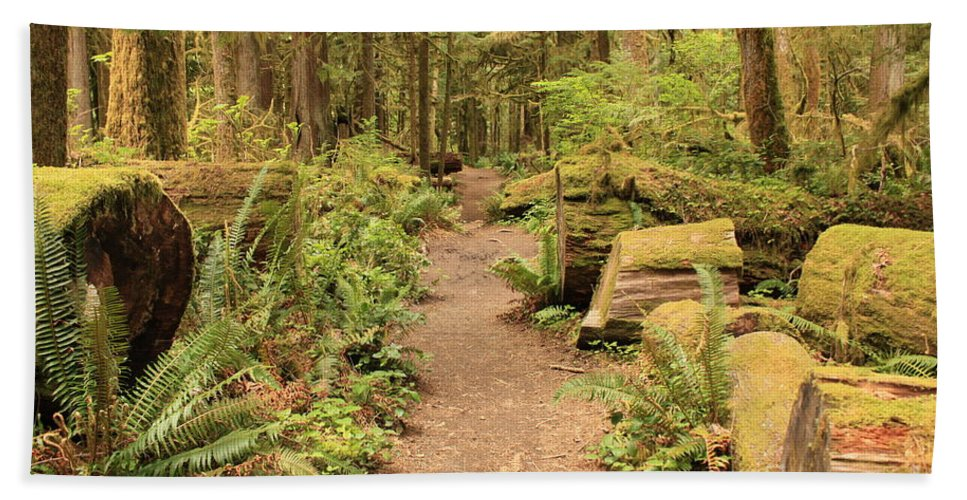 Lake Crescent Bath Sheet featuring the photograph Path Through Mossy Forest by Carol Groenen