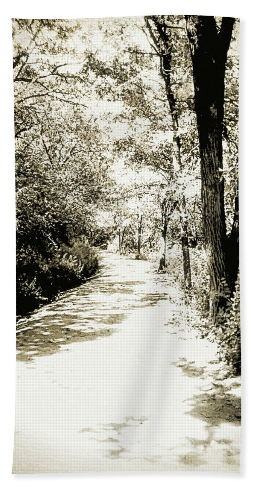 Forest Hand Towel featuring the photograph Pathway by Julie Hamilton