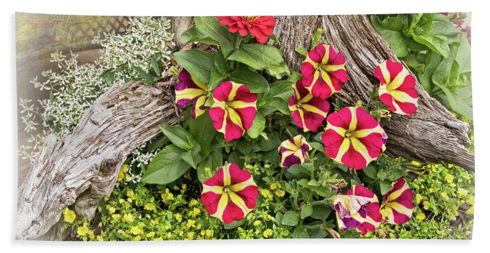 Patio Container Garden Hand Towel featuring the photograph Patio Container Garden by Carolyn Derstine