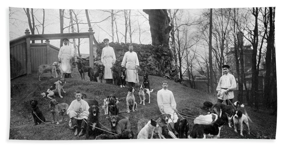 History Hand Towel featuring the photograph Pavlovs Dogs With Their Keepers, 1904 by Wellcome Images