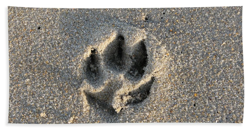 Dog Hand Towel featuring the photograph Pawprint In The Sand by Stacey May