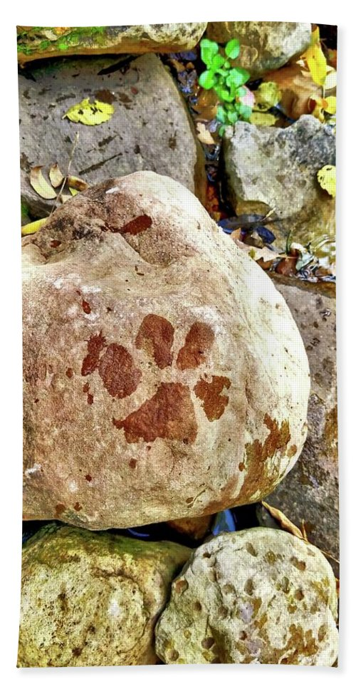 Puppy Bath Sheet featuring the photograph Paws On The Rocks by Bonny Puckett