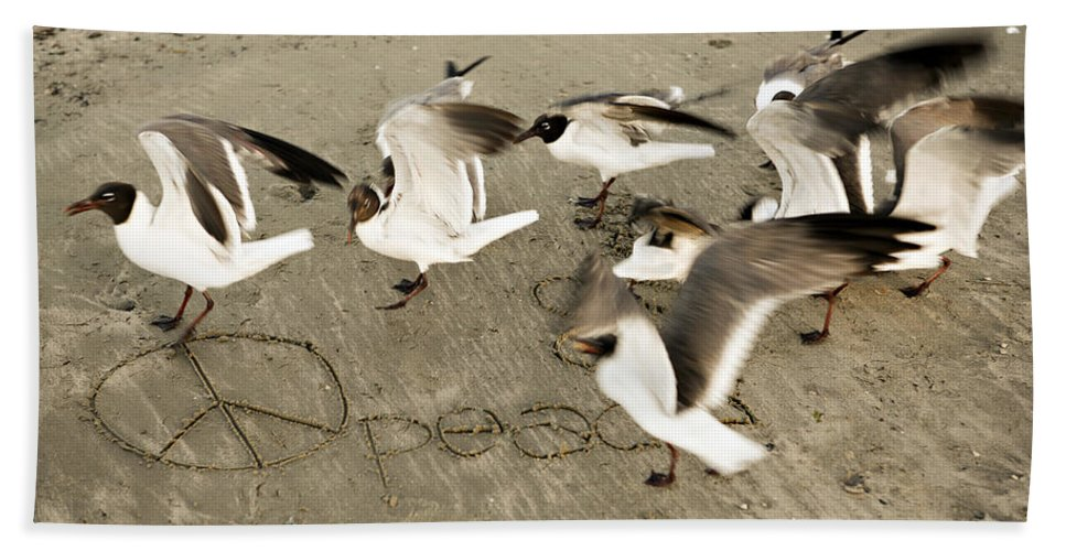 Bird Hand Towel featuring the photograph Peace Dance by Marilyn Hunt