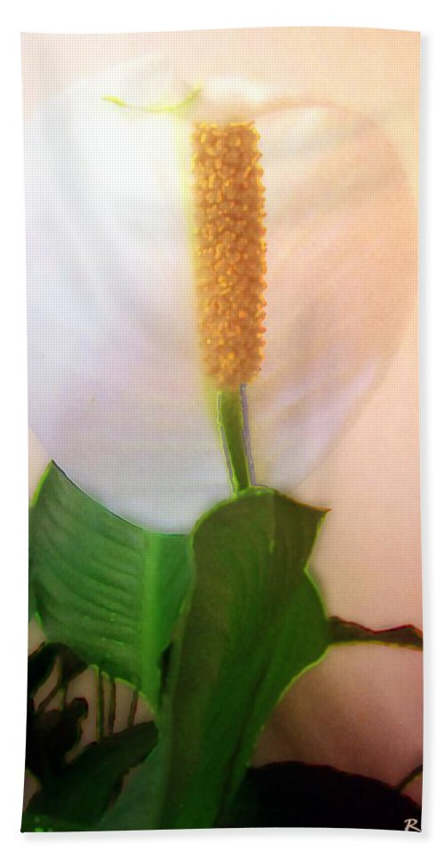 Flower Bath Sheet featuring the painting Peace Lily Luminous by RC DeWinter