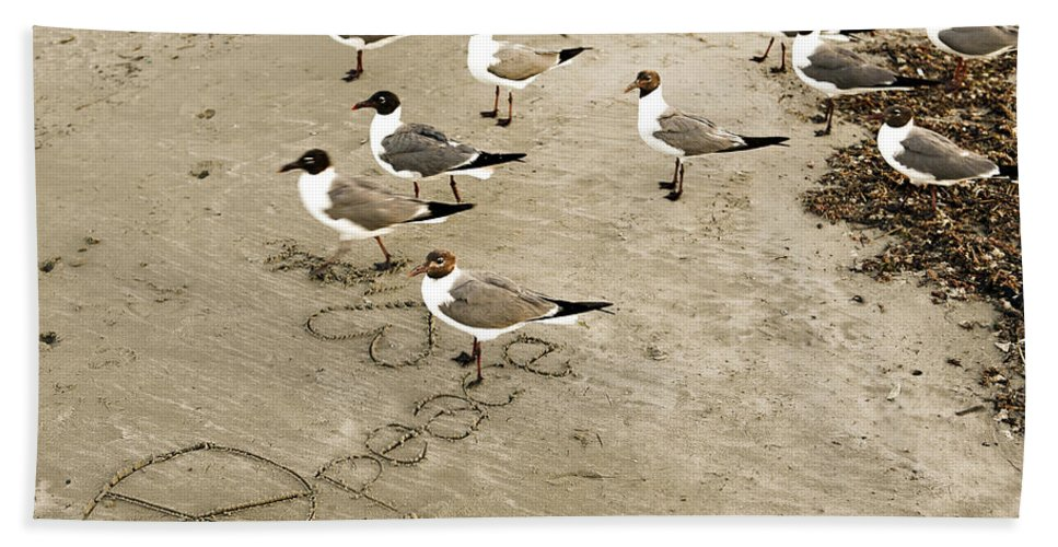 Americana Bath Towel featuring the photograph Peace On The Beach by Marilyn Hunt
