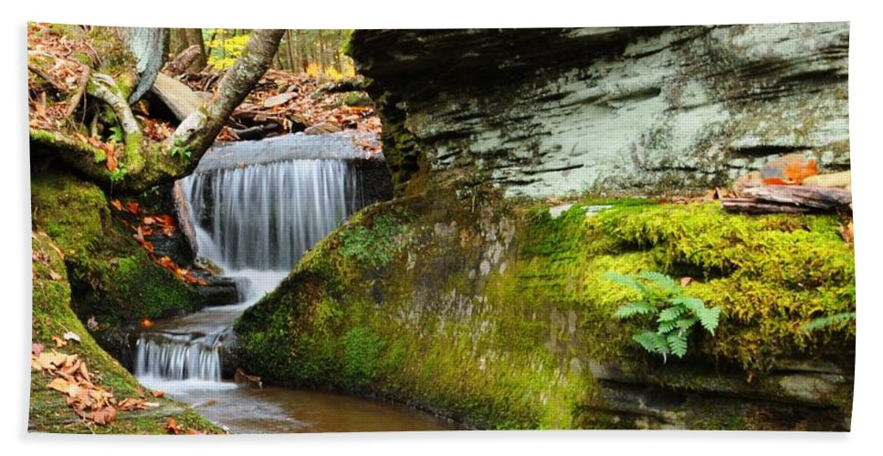 Stream Hand Towel featuring the photograph Peaceful Flow by Scott Hafer